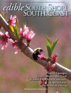 Edible South Shore Spring 2015 cover