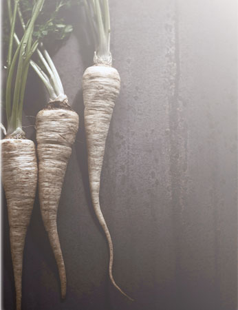 The Parsnip…Carrot's Forgotten Cousin
