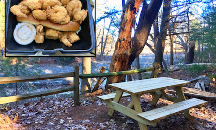 PICNIC LUNCHBREAK: Enjoying Takeout from The Anchor restaurant at Cow Tent Hill Preserve, Duxbury